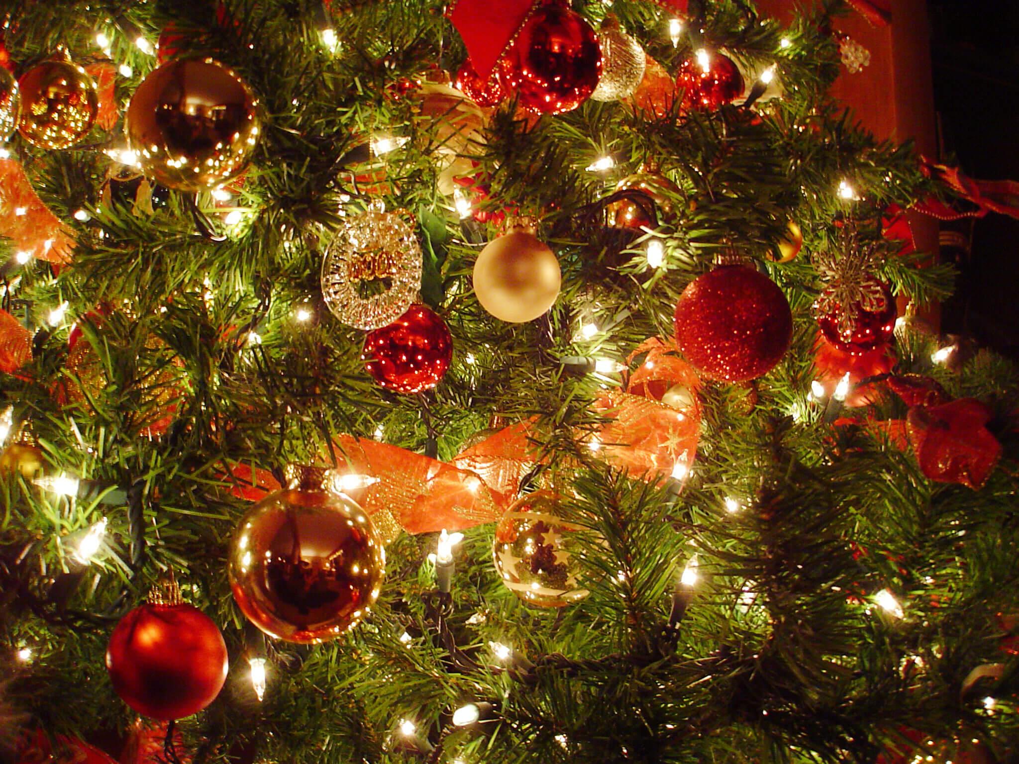 christmas_decor_DaveDyet